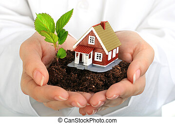 Small house and plant in hands. Isolated over white.
