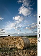 Round Straw Bales - Field Stubble - Round Straw Bales in...