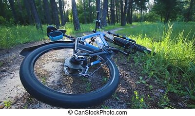 crashing bicycle accident in the summer forest