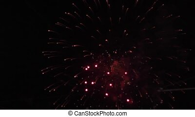 firework display color - firework display in dark sky