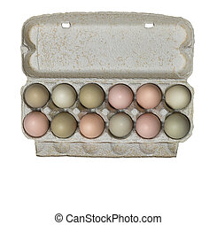 Egg carton, isolated - A dozen fresh organic eggs in carton...