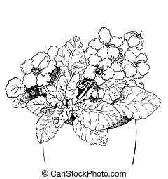 Violet flower in pot. - Hand drawing isolated objects on...