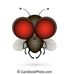House fly insect and cartoon black fly insect. Insect hairy...