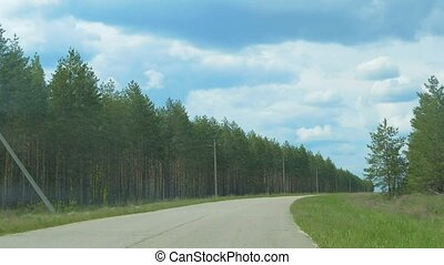 Spring view from the car window of the pine forest slow...