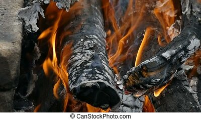 charred logs in the fire slow motion video - large charred...
