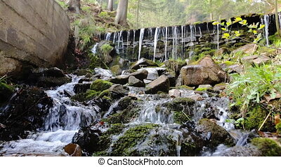 Fresh water stream with waterfall in green mountain forest,...