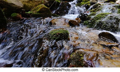 Green and wet mossy stones along mountain river stream with...