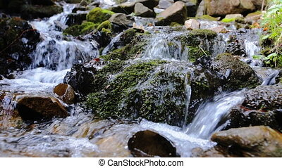 Fresh water flowing over green and wet mossy stones, close...