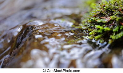 River water cascades around and over mossy rocks, close up
