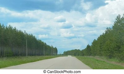 It is seen from the car window pinewood slow motion video -...