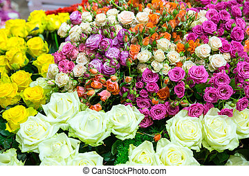 Colorful flowers - Many various colorful flowers background