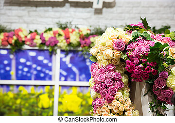 Colorful flowers - Many various colorful flowers in the...