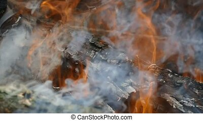 log charred in the fire slow motion video - large logs with...
