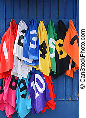 thoroughbred horse number bibs