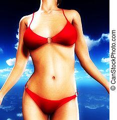 Sexy Bikini Torso - Up close view of a sexy female body in a...