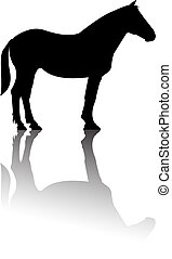 Horse standing silhouette reflectio - Outline of horse...