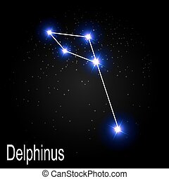 Delphinus Constellation with Beautiful Bright Stars on the...