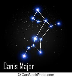 Canis Major Constellation with Beautiful Bright Stars on the...