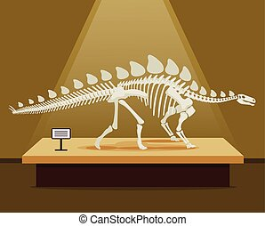 Stegosaurus bones skeleton in museum exhibition Vector flat...
