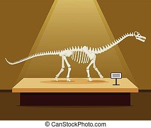 Titanosaur bones skeleton in museum exhibition. Vector flat...