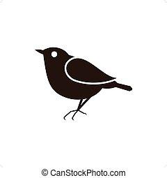 Blackbird - Vector illustration silhouettes of bird on the...