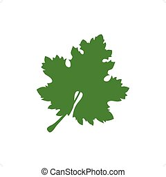 Grape Leaf - Green grape leaf isolated on the white...