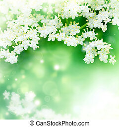 abstract natural  background with white flowers