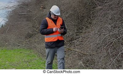 Lumberjack using tablet PC and walking near pile of branches