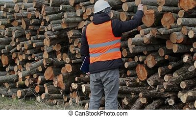 Lumberjack take pictures on smart phone near log of pile