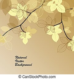 Natural background with yellow leaves.