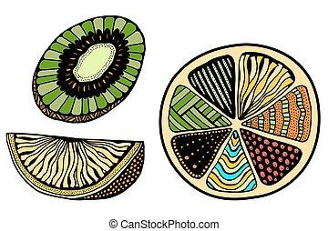 Set of fruits - Set of colored orange, lemon, kiwi fruits on...