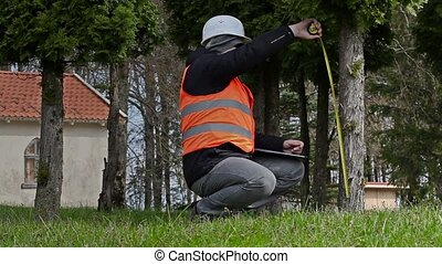 Building inspector with measure tape near tree