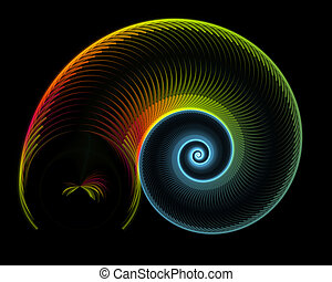 colorful nautilus - Abstract illustration of colorful...