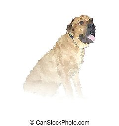 abstract adult dog portrait