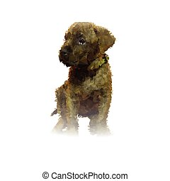 abstract puppy portrait