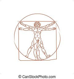 The Vitruvian Man - The Vitruvian man detailed drawing on...