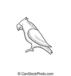 Parrot sketch icon. - Parrot vector sketch icon isolated on...