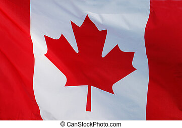 Close-up of a Canadian Flag Fluttering in the Wind