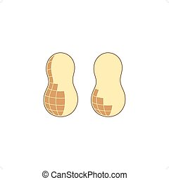 Peanuts - Two peanuts vector illustration isolated on white...