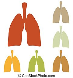 Human organs Lungs sign. Colorful autumn set of icons.