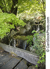 Close-up of a waterfall in a Japanese garden
