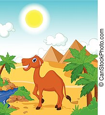 funny camel cartoon with desert