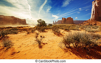 bushes in the orange sand of monument valley