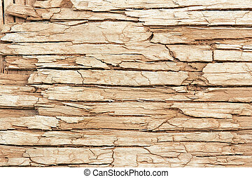 extreme close up of an old cracked wooden surface