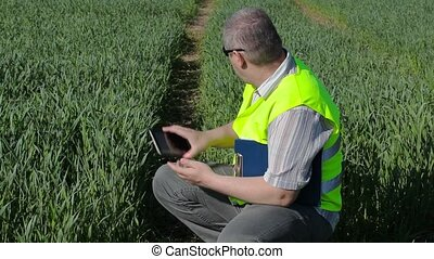 Farmer take pictures on tablet PC at the green cereal field