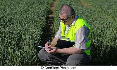 Farmer writing at the green cereal field