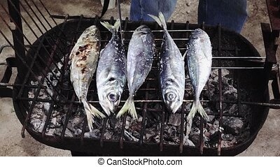 Cooking Fish on Barbeque, closeup