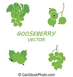 Vector flat gooseberry icons set on white background