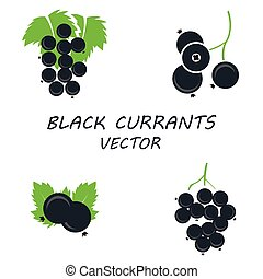 Vector flat black currants icons set on white background