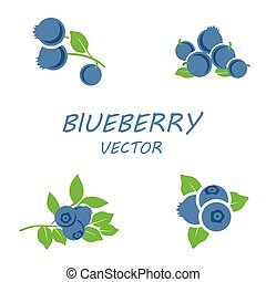Vector flat blueberry icons set